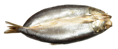 Whole Split Kipper. A whole smoked Manx style split kipper, isolated on a white background Stock Image