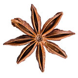 Whole Star Anise isolated Royalty Free Stock Photos