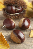 Whole sweet chestnuts Stock Photos