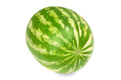 Whole sweet watermelon, front view, on white background Royalty Free Stock Photo