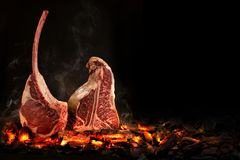 Whole T-Bone steak cooking on embers. Black background stock photo
