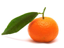 Whole Tangerine with Leaf Stock Images