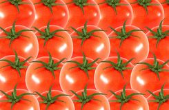 Whole tomato  abstract seamless pattern Stock Image