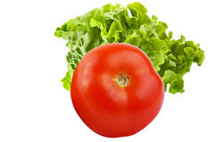 Whole tomato with salad isolated on white background. Whole tomatoes isolated on white background as package design element stock images
