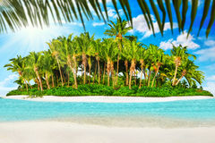 Whole tropical island within atoll in Indian Ocean and blank  Royalty Free Stock Photos