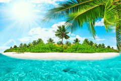 Whole tropical island within atoll in tropical Ocean. Royalty Free Stock Photo