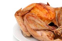 Whole turkey on white background Royalty Free Stock Photos