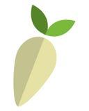 Whole turnip icon Royalty Free Stock Images