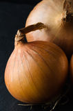 Whole Unpeeled Onion Stock Photos