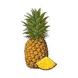 Whole, unpeeled, uncut, vertical pineapple and wedge formed slice Royalty Free Stock Photos