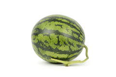 Whole view of fresh watermelon Royalty Free Stock Photos