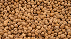 Whole Walnut Background Stock Photos