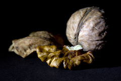 Whole Walnut and a Cracked Walnut  on Black Background Royalty Free Stock Photography