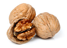 Whole walnut and half walnut piece. Royalty Free Stock Images