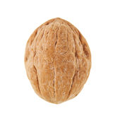 Whole Walnut Isolated Royalty Free Stock Photos