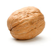 Whole walnut isolated. On a white background Stock Photos
