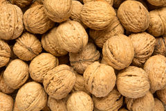 Whole walnuts Royalty Free Stock Images