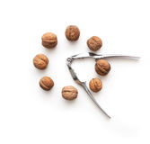 Whole walnuts circle shape and tongs. Isolated whole walnuts circle shape and tongs Stock Photos
