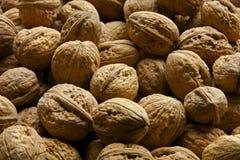 Whole walnuts close up Stock Image