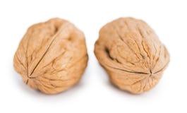 Whole Walnuts isolated on white Royalty Free Stock Photo