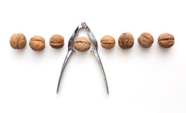 Whole walnuts line and tongs. Isolated whole walnuts line and tongs Stock Photography