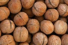 Whole walnuts in nutshells close up Stock Photos