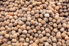 Whole walnuts in shell background. Walnuts in shell full background - top view Royalty Free Stock Photo