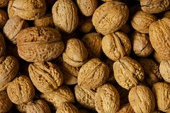 Whole walnuts in shell. Close up abstract of whole walnuts in shell Royalty Free Stock Photography