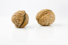 Whole walnuts Stock Image