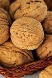 Whole walnuts in a wicker basket Stock Image