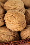 Whole walnuts in a wicker basket Royalty Free Stock Image