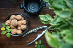Whole walnuts on wooden background stock photo