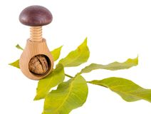 Whole walnuts and wooden screw nutcracker isolated on white background. We like walnuts. Advertising on walnuts Stock Photo