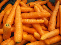 Whole washed carrot background. Stock Photography