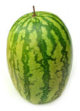 Whole watermelon Royalty Free Stock Photography