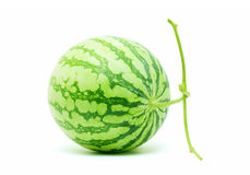 Whole watermelon (Clipping path) Royalty Free Stock Photography