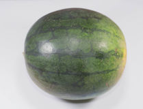 Whole watermelon Stock Image