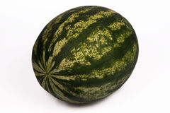 Whole Watermelon Stock Photography