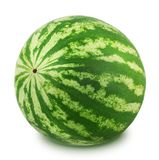 Whole watermelon on a white background. Stock Photography