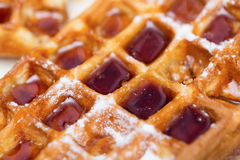 Whole wheat Belgium waffle with maple syrup close up as background.  royalty free stock image