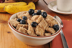 Whole wheat cereal with blueberries Stock Images
