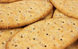 Whole Wheat Crackers Stock Photo
