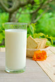 Whole wheat flour crackers and milk Stock Photography