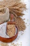Whole wheat flour Royalty Free Stock Photo