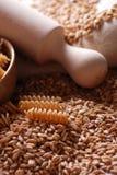 Whole wheat fusilli pasta Royalty Free Stock Photography