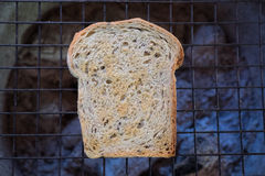 Whole wheat grilled toast. Sliced whole wheat grilled toast Royalty Free Stock Image