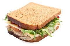Whole wheat healthy turkey sandwich Royalty Free Stock Image