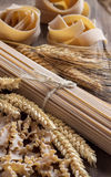 Whole wheat italian pasta with spikes Stock Images