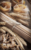 Whole wheat italian pasta with spikes Stock Photography