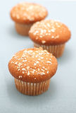 Whole wheat muffins Stock Photo